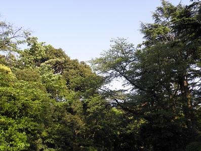 東京都庭園美術館前