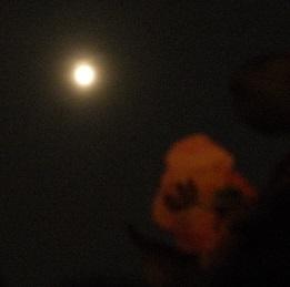 夏至前夜いて座の満月