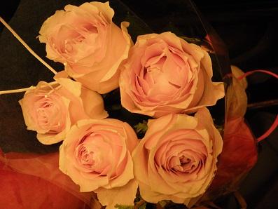 誕生日のバラ