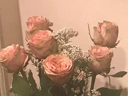 アロマテラピースクール・緑のとびら バラ ローズ