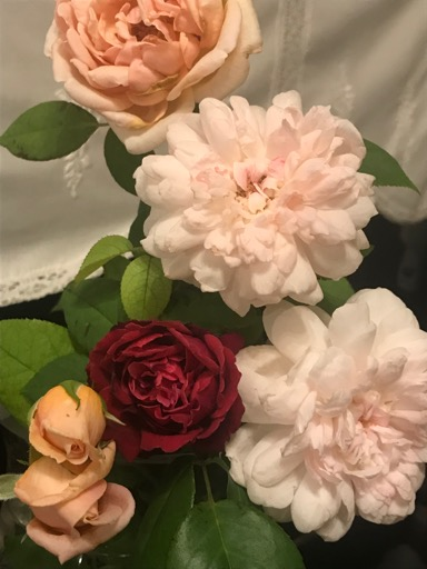 アロマテラピースクール・緑のとびら アロマライフコーチング バラ